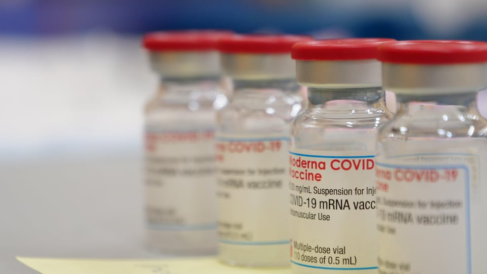 Une fiole du vaccin de Moderna.